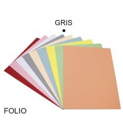 Subcarpeta cartulina grafoplas en formato folio, color pastel gris.