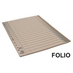 Abecedario 20 posiciones en pvc con multitaladro grafoplas en formato folio, color gris.