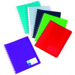 Carpeta de polipropileno con 20 fundas transparentes extraibles geode viquel en din a-4 de colores surtidos.