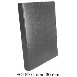 Carpeta de proyectos con gomas en cartón gofrado liderpapel en formato folio, lomo 30 mm. color gris.