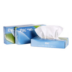 Pañuelo facial de papel tisú goma-camps 100% celulosa virgen, 2 capas, 210x297 mm. caja dispensadora de 100 uds.