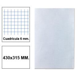 Papel florete liderpapel en formato 430x315 mm. de 60 grs/m². 6x6 mm. paquete de 250 hojas.