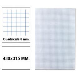 Papel florete liderpapel en formato 430x315 mm. de 60 grs/m². 8x8 mm. paquete de 250 hojas.